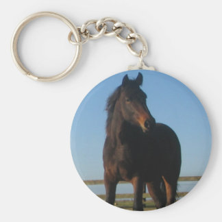 Bucht-Pferd Keychain Schlüsselanhänger