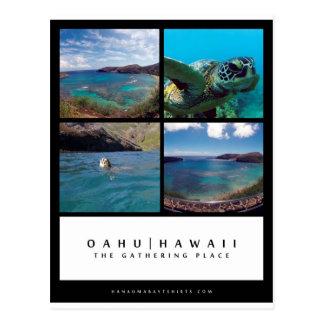 Bucht-Postkarte Oahus Hawaii Hanauma Postkarte