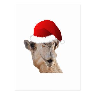 Buckel-Tageskamel-Weihnachtsmann-Hut Postkarte