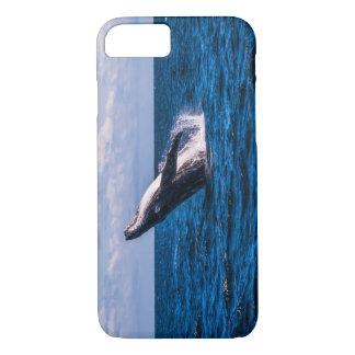 Buckel-Wal, der weg vom Surfer-Paradies iPhone 8/7 Hülle