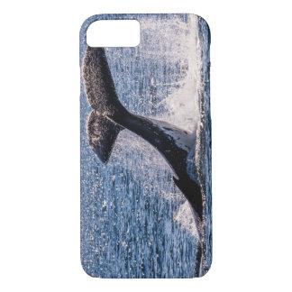 Buckel-Wal - Schwanz-Plattfisch iPhone 7 Fall iPhone 8/7 Hülle