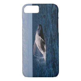 Buckel-Wal-Schwanz-Plattfisch weg vom iPhone 8/7 Hülle