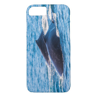 Buckel-Wale weg vom Surfer-Paradies Australien iPhone 8/7 Hülle