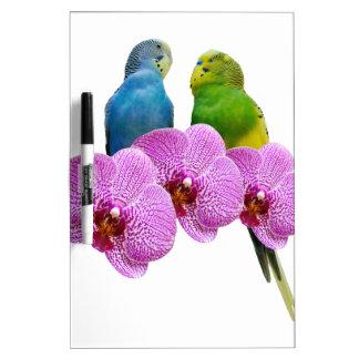 Budgie mit lila Orchidee Trockenlöschtafel