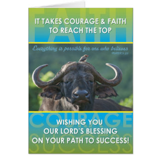Büffel-Erfolg Grußkarte