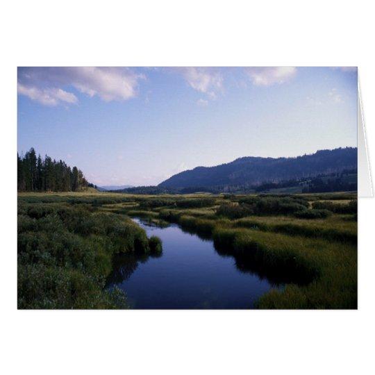 Büffel-Fluss, North Fork Wy. Grußkarte