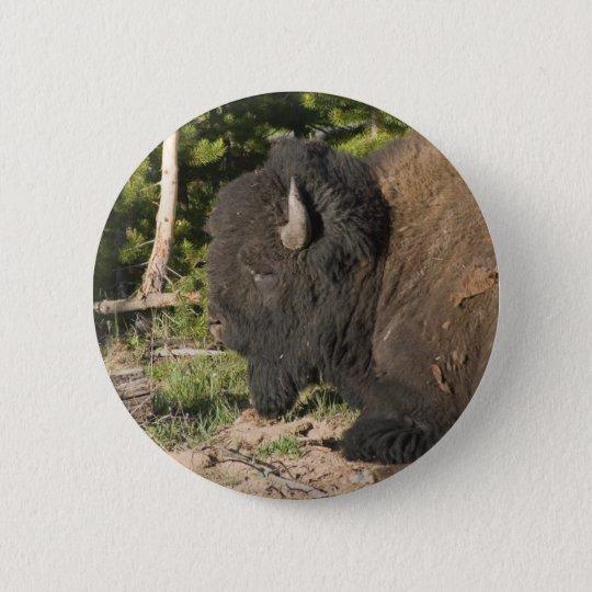 Büffel-stillstehender Knopf Runder Button 5,7 Cm