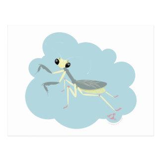 Bugzter - betender Mantis-blasse Wolke Postkarte