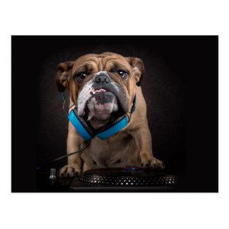 Bulldogge DJ - DJ verfolgen Postkarte