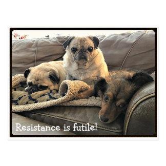 Bumblesnot: Widerstand ist vergebliche Postkarte
