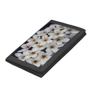 Bündel der weißen Blumen