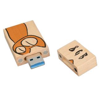 Bunte Anstarrenlos Katzen Holz USB Stick