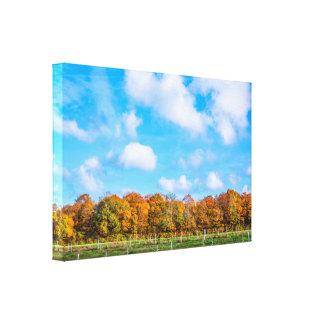 Bunte Bäume in einer Herbstlandschaft Leinwanddruck