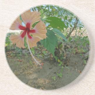 bunte Blume Untersetzer