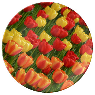 Bunte Frühlingstulpedruck-Porzellanplatte Teller