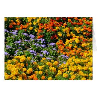 Bunte Ringelblumen-Blumengarten-Grußkarte Karte
