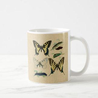 Bunte Schmetterlinge und Raupen Kaffeetasse