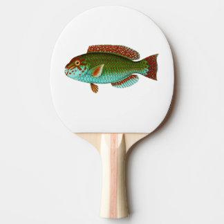 Bunte Vintage Fische Tischtennis Schläger