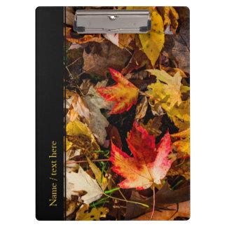Bunter Herbst-Nachmittag Klemmbrett