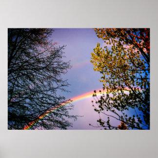 Buntes Rainbow&Trees Poster