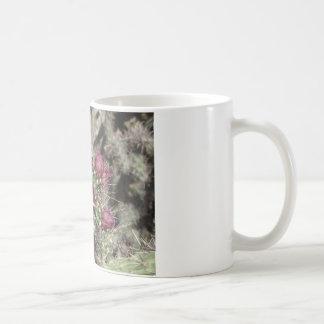 Burgunder-Kaktus-Blumen Kaffeetasse