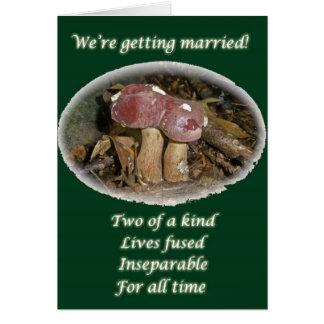 Burgunder-Pilz, der verheiratet erhält Karte