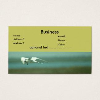 Bus. Karte - Seeschwalbe