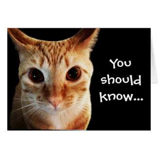 ButterLieben Sie lustige Katzen-Anmerkungs-Karte Mitteilungskarte