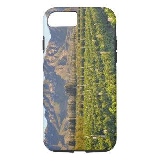 Cabernet-Sauvignon Reben in Huailai Rongchen 2 iPhone 8/7 Hülle