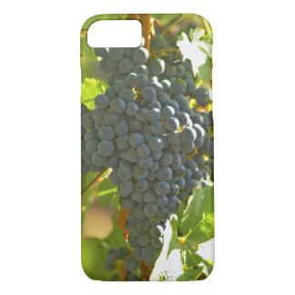 Cabernet-Sauvignon Traubenbündel im Chateau iPhone 8/7 Hülle