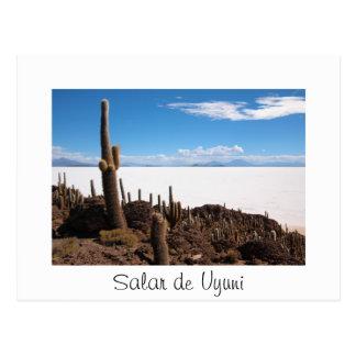 Cactus à la carte postale de frontière des textes