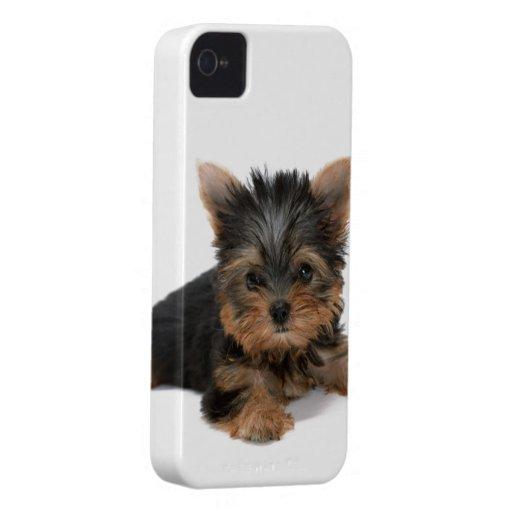 Caisse audacieuse de mûre mignonne de chien de Yor Coque iPhone 4 Case-Mate