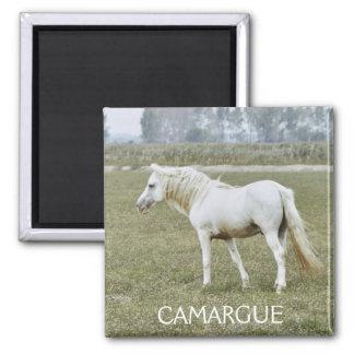 Camargue Stallionsmagnet Quadratischer Magnet