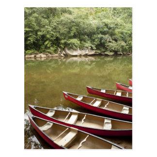 Canoeing der Macal Fluss, Belize Postkarte