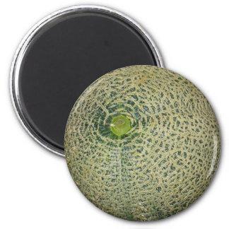 Cantaloup frais de jardin magnets pour réfrigérateur