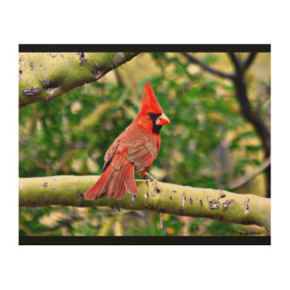 Cardinal sur un art en bois de mur de membre