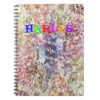 CARNET DE DIVERTISSEMENT DE HARLES