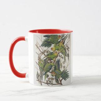 """CarolinaParakeet, """"von den Vögeln von Amerika"""", Tasse"""