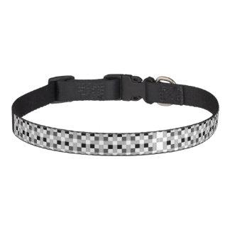 Carta/mittleres Hundehalsband Leine