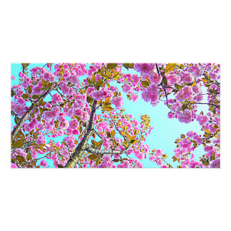 carte d'arbre fleurissant photocarte customisée