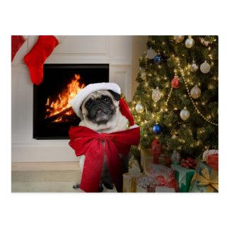 Carte de Noël de Misha de carlin