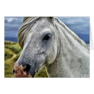 Carte de note de cheval sauvage
