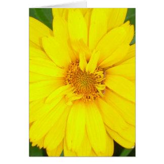 Carte Flower power