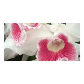 Carte photo de fleur cartes de vœux avec photo