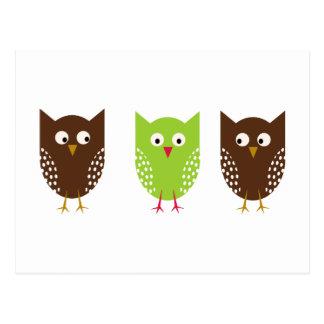 Carte postale de Noël de trois hiboux
