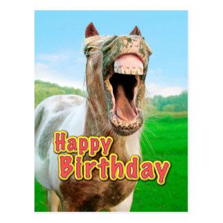 joyeux anniversaire a cheval