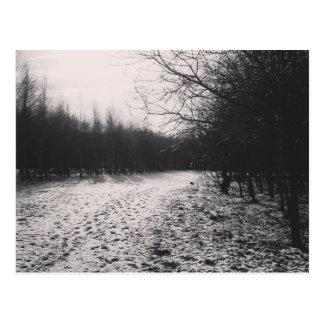 Carte Postale Noir et blanc congelé