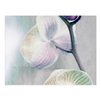 Carte postale peinte d'orchidée