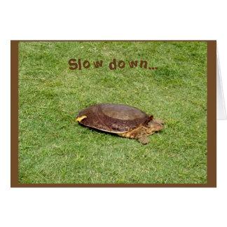 Carte Retraite - tortue de ralentissement sur le terrain