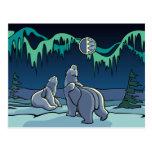 Cartes postales d'art d'ours indigène de carte pos